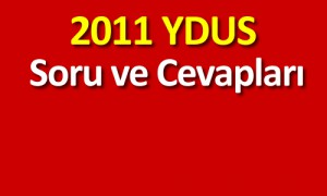 2011ydus333